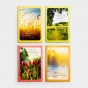 Encouraging Care - Bundle of 4 Boxed Cards