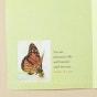 Bright Blessings - Praying for You - Precious to God - 6 Premium Cards