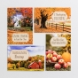 Thanksgiving Assortment - 24 Boxed Cards
