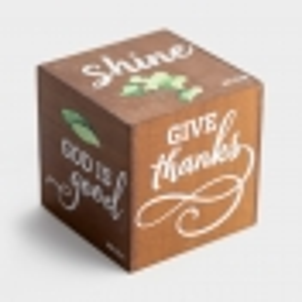 Shine - Wooden Cube Plaque