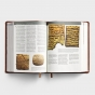 CSB Holy Land Illustrated Bible - Tan LeatherTouch