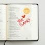 Illustrated Faith - 194-Piece Apple of My Eye Alphabet Stickers
