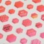Illustrated Faith - Apple of My Eye Mix - 53-Piece Mini Hexie Stickers