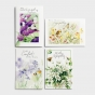 Care & Concern - Bundle of 4 Boxed Cards