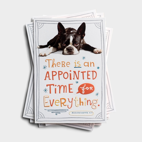 Get Well - Appointed Time - 6 Premium Card