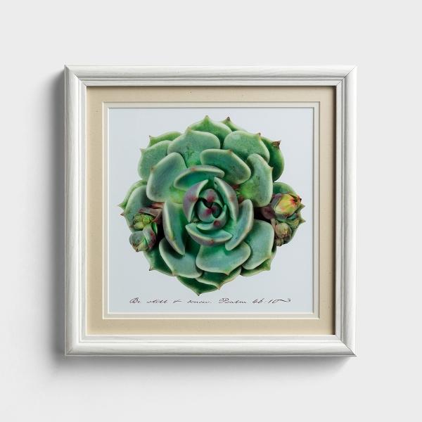 Be Still & Know - Succulent Framed Wall Art