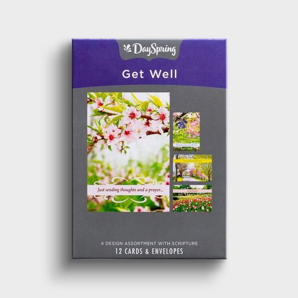 Get Well - Spring Time - 12 Boxed Cards