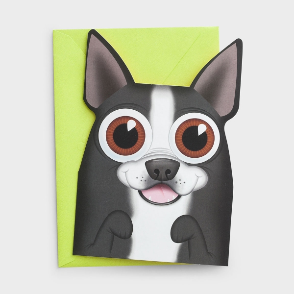 U-NEEKS - Get Well - Trysta May - 3 Premium Cards for Kids