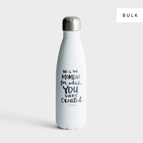 You Were Created - 24 Stainless Steel Water Bottles - Bulk Discount