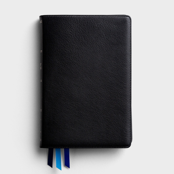 NIV Thinline Premium Goatskin Leather Bible - Large Print