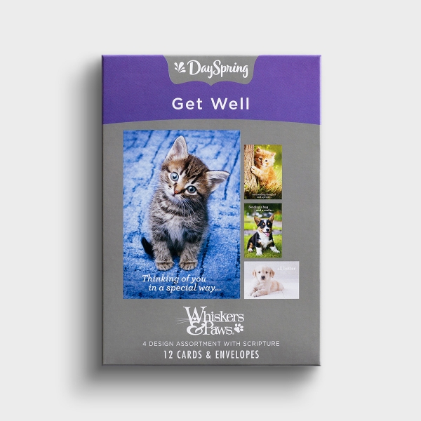 Get Well - Whiskers & Paws - 12 Boxed Cards, KJV