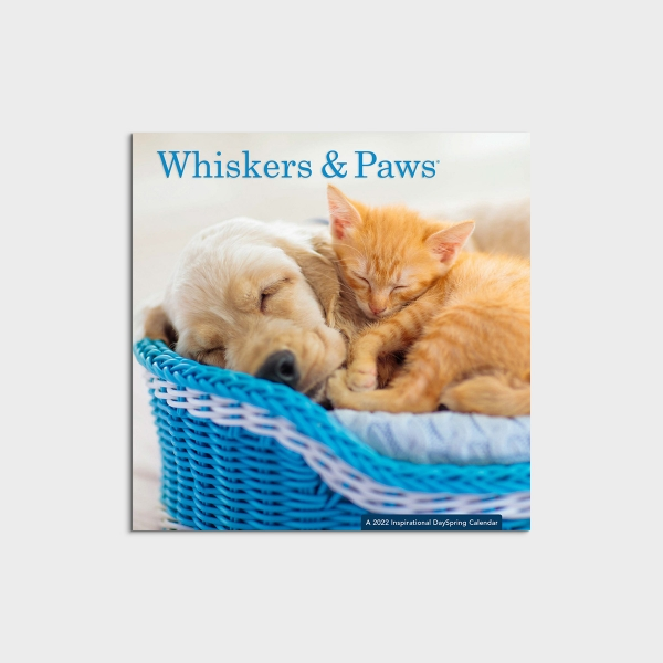 Whiskers & Paws - 2022 Mini Wall Calendar