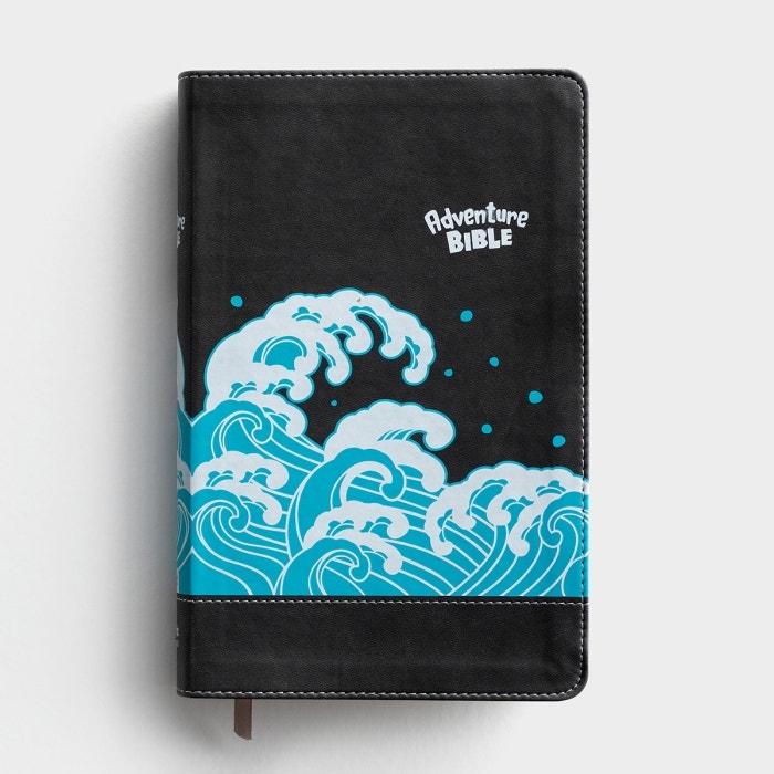 NIV Adventure Bible, Gray