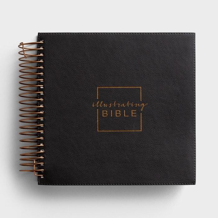Illustrating Bible - NIV - Gray