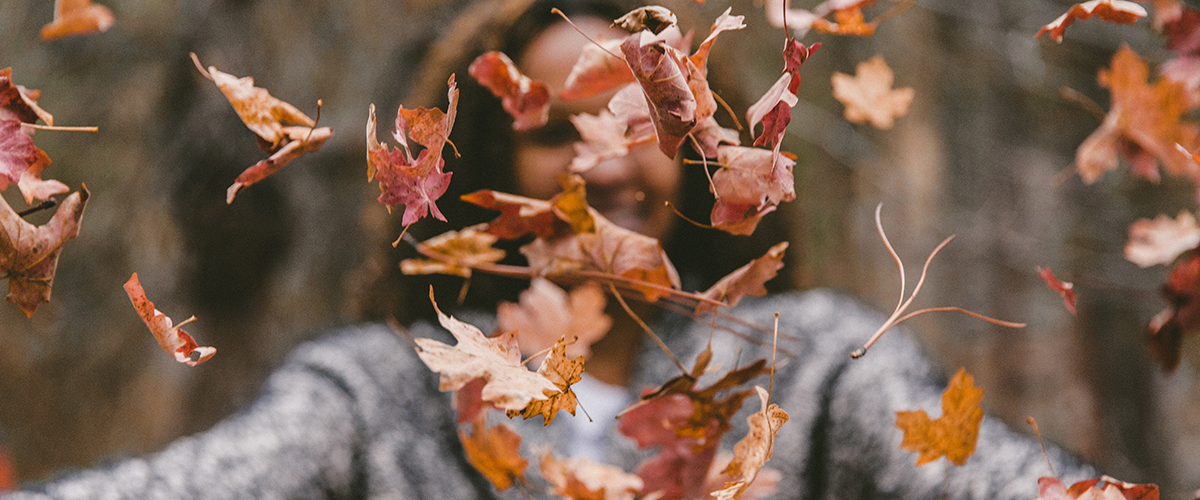Letting Your Leaves Fall