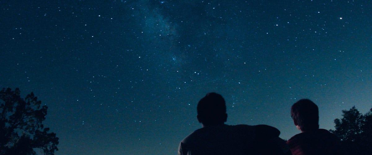 Take Time to Catch Fireflies